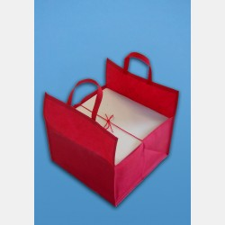 NONWOOVEN FABRIC RED BAG
